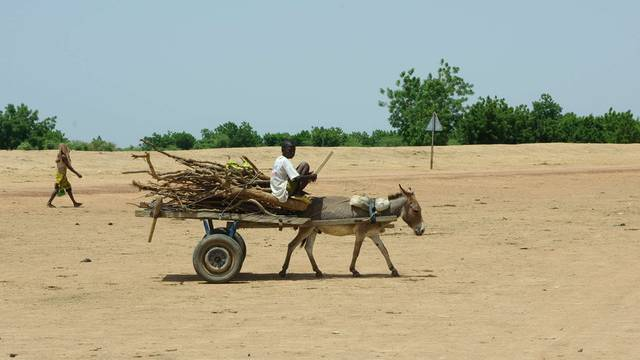Auch in Mali droht wegen extremer Dürre eine Hungerkatastrophe (Archiv)