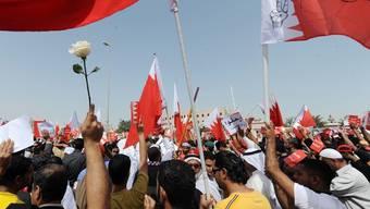 Bereits am Sonntag waren schiitische Oppositionelle in Bahrain auf die Strasse gegangen