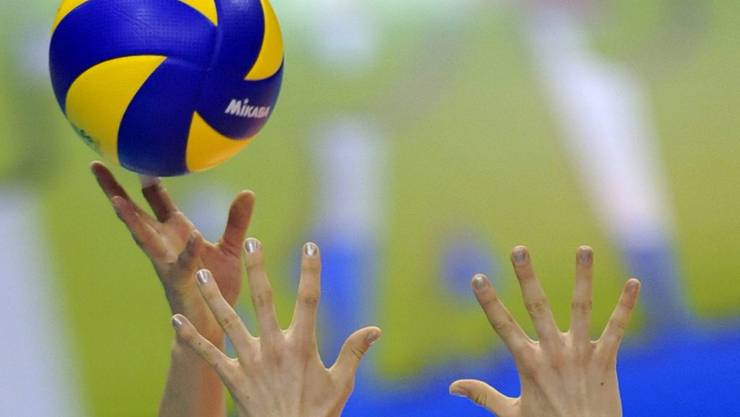 Volleyball Frauen Feature.jpg