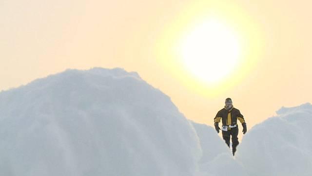 Baer am Nordpol - Trailer
