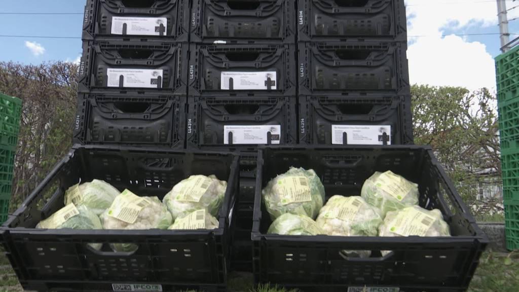 Food Chat: Thurgauer rettet unperfektes Obst und Gemüse