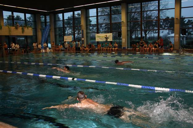 Die Sportler gaben an den Schwimm-Meisterschaften alles