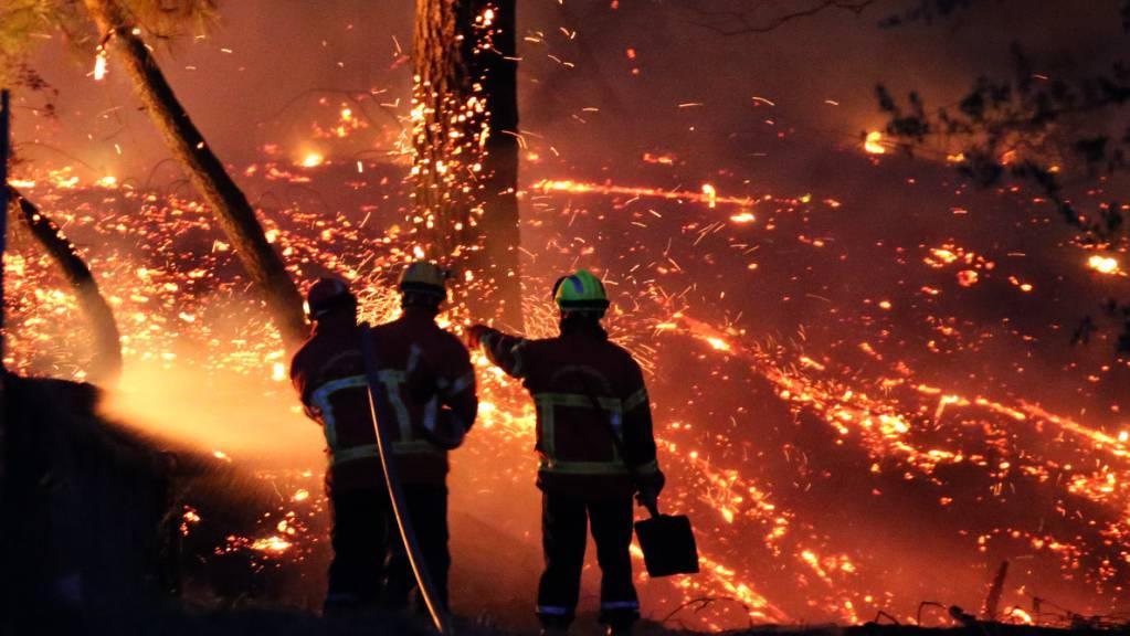 Im Südwesten Frankreichs wüten heftige Buschfeuer.