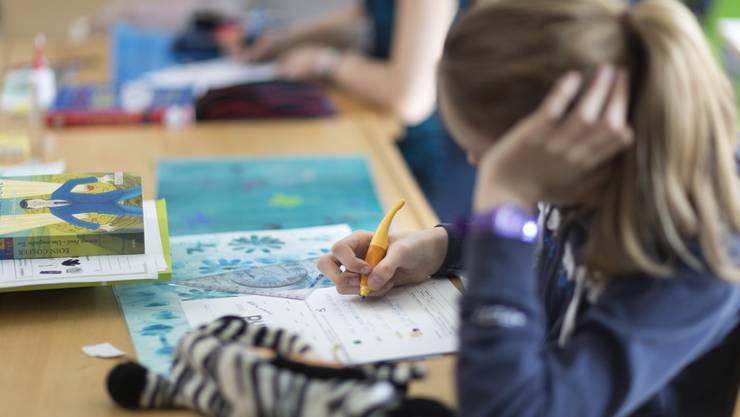 «Auch unter dem Gesichtspunkt der Förderung der Standortattraktivität wäre es interessant, den Markt für private Tagesschulen zu öffnen», sagt Michael Segrada, Dietiker FDP-Gemeinderat. (Symbolbild)