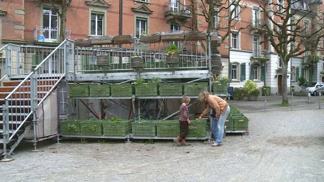 Langfinger verderben Urban Gardening