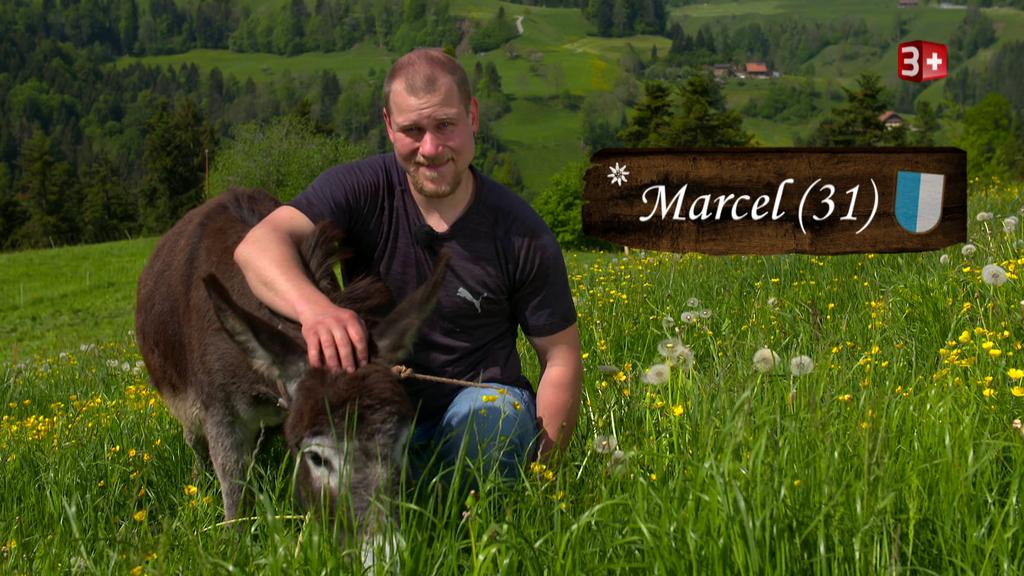 Heute startet der Luzerner Marcel in sein Liebesabenteuer