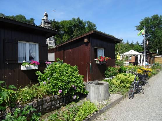 Ein Idyll oberhalb der lauten Stadt: Die Familiengärten «In den Weinreben» oberhalb von Dietikon.