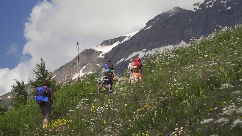 Wanderunfälle nehmen zu: Wanderer überschätzen sich