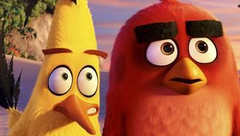 """Die """"Angry Birds"""" Chuck (l) und Red haben am Pfingstwochenende am meisten Volk in die Deutsch- und Westschweizer Kinos gelockt - allerdings nicht so viel wie erwartet. (Archivbild)"""