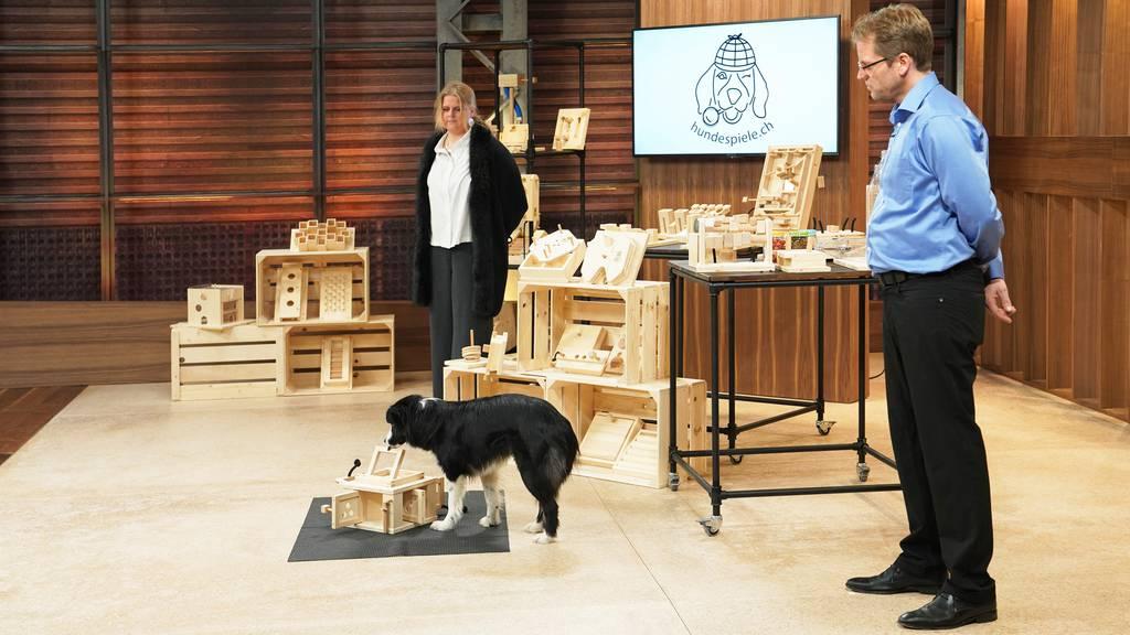 Hundespiele.ch: Intelligenzspiele für Hunde und Katzen