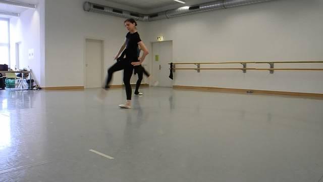 Die Tänzer der Tanzkompanie Pidarco im Einsatz