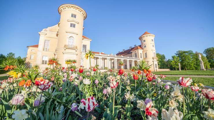 Das prunkvolle Schloss hat Friedrichs jüngerer Bruder geprägt, Prinz Heinrich von Preussen.