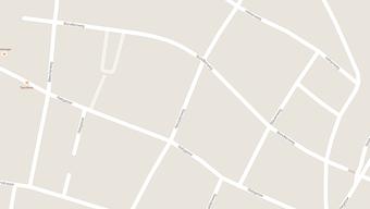 Die mutmasslichen Einbrecher haben im Gebiet Blauenweg/Bündtenweg Aufmerksamkeit erregt.