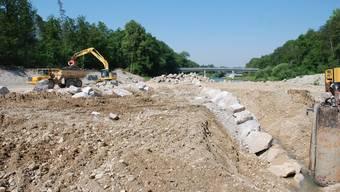 Die neue Flussaue zwischen Auenstein und Rupperswil