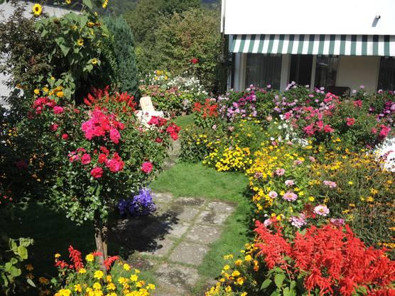 Ihr Garten ist Elfriede Muntwylers Leidenschaft