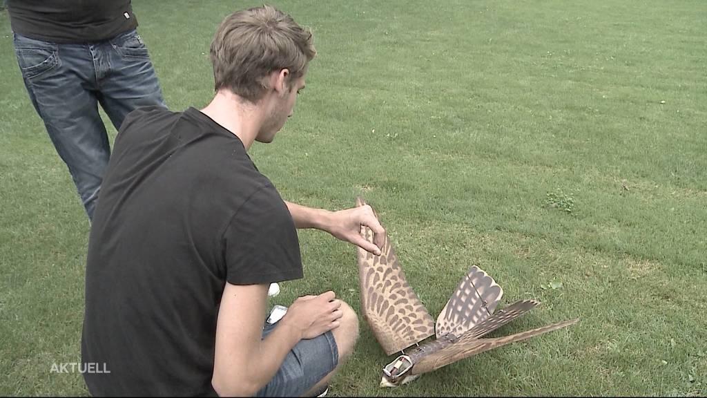 Umstrittener Einsatz von Krähen-Drohne