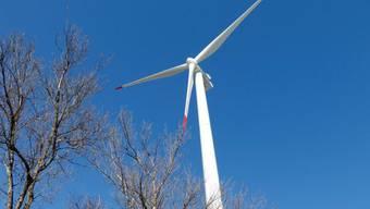 Die Bedeutung der erneuerbaren Energie soll in der Verfassung erwähnt werden. (Archiv)