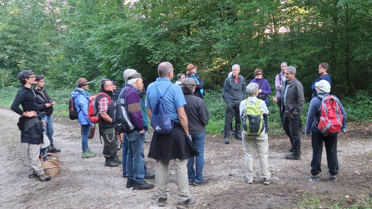 Auf einem Rundgang durch den Wald wurden unter anderem die Themen Waldpflege und Artenvielfalt besprochen