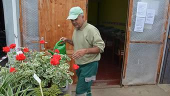 Gärtner Markus Schweighauser ist frustriert: Spätestens im neuen Jahr werden er und die Betreuten die Blumen nicht mehr an der Bibersteinstrasse 54 giessen.bie