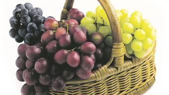 Jede Weintraube sollte mit einem bestimmten Zuckergehalt geerntet werden. (Symbolbild)