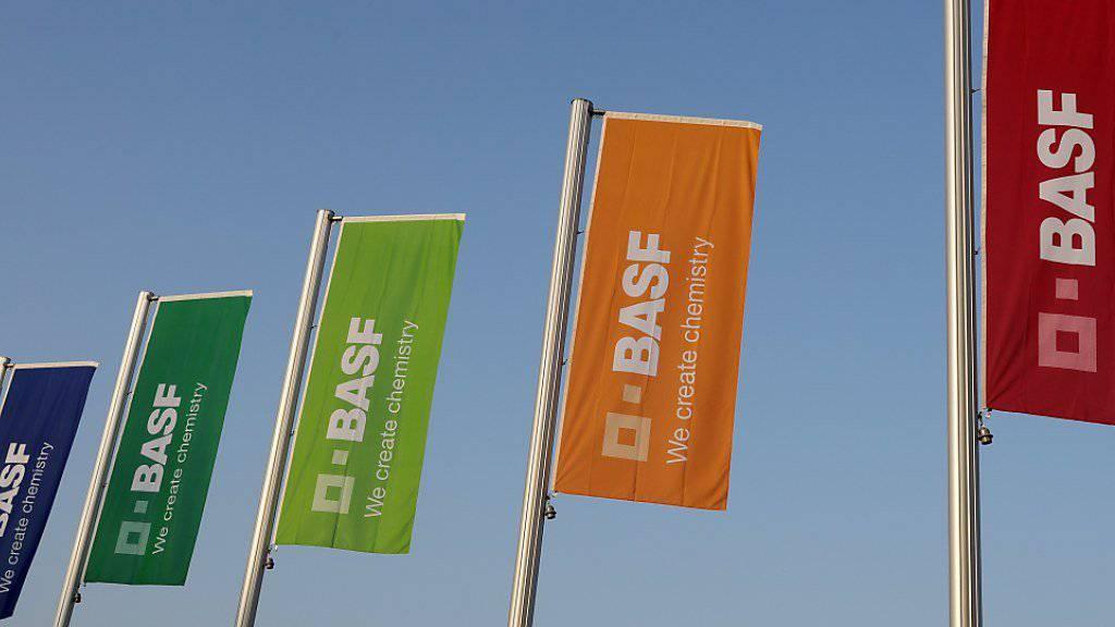 Der Chemiekonzern BASF stösst einen Teil seines Geschäfts ab in die Niederlanden. (Symbolbild)