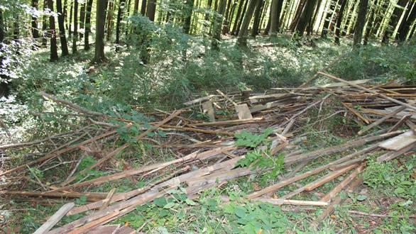 Ein Unbekannter hat ein ganzes Dach im Wald von Untersiggenthal entsorgt.