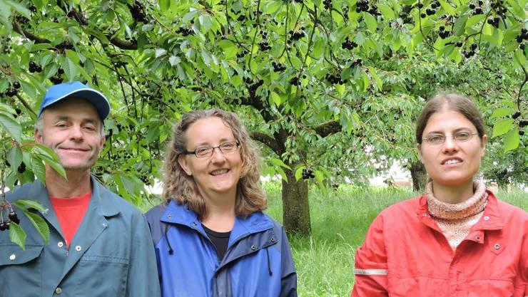 Gemeinsam an die Pflückarbeit: Roland und Gisela Meyer auf dem Lohnberg in Zuzgen mit Petra Bachmann (rechts) von der Geschäftsstelle Jurapark Aargau. bi