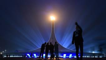 Die schönsten und lustigsten Bilder der Olympischen Spiele von Sotschi