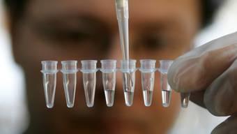Wie detailliert soll eine DNA eines Verdächtigen ausgewertet werden können? Das Parlament will weiter gehen als heute. (Symbolbild)