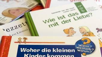 Bücher aus dem umstrittenen Sex-Koffer der Basler Schulen (Archiv)