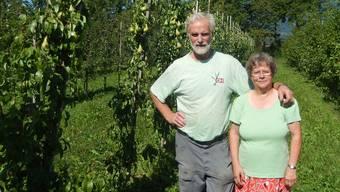 Simon und Vreni Antener in ihrer Obstplantage