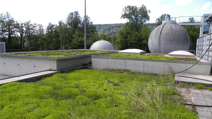 Die ARA Wasserschloss in Windisch reinigt das Abwasser von elf Gemeinden.