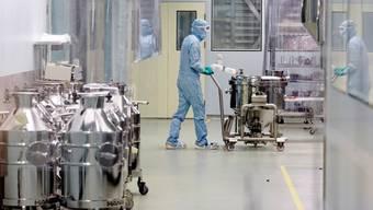 Produktion von Medikamenten bei Novartis in Stein AG. (Symbolbild)