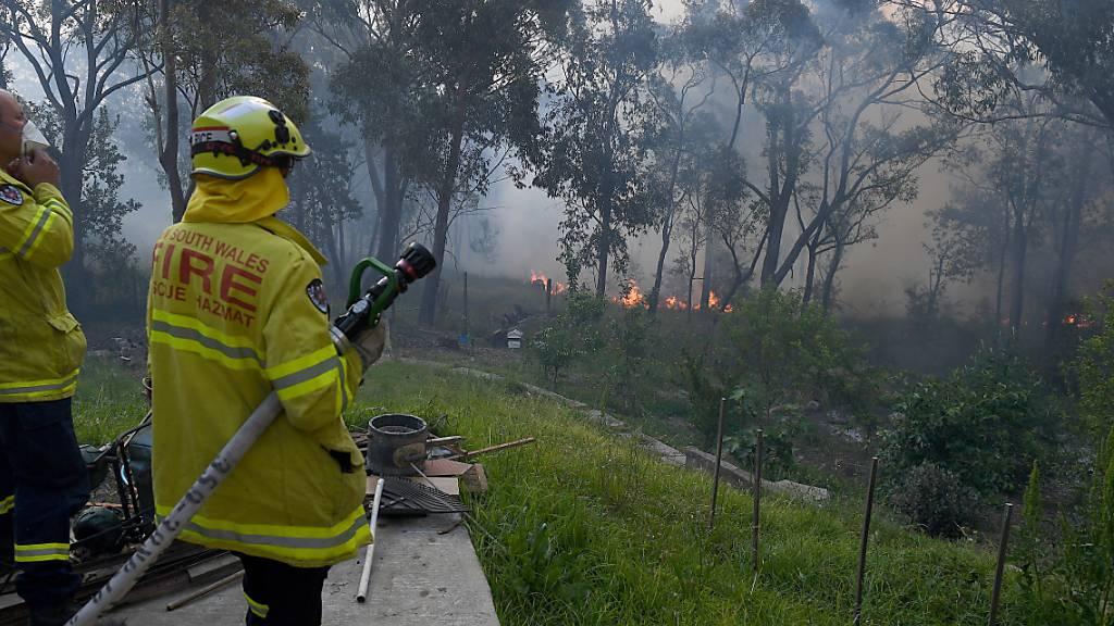 Buschfeuer halten Einsatzkräfte auf Trab
