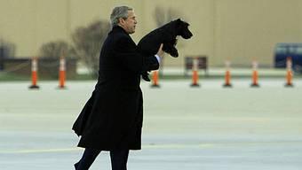 George W. Bush mit Barney (Archiv)