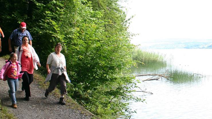 Nicht nur Wanderer, sondern auch Velofahrer sollen auf einem eigenen Weg den Hallwilersee umrunden können. (Archiv)