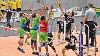 Volley Schönenwerd verliert gegen Amriswil mit 0:3 (symbolbild)