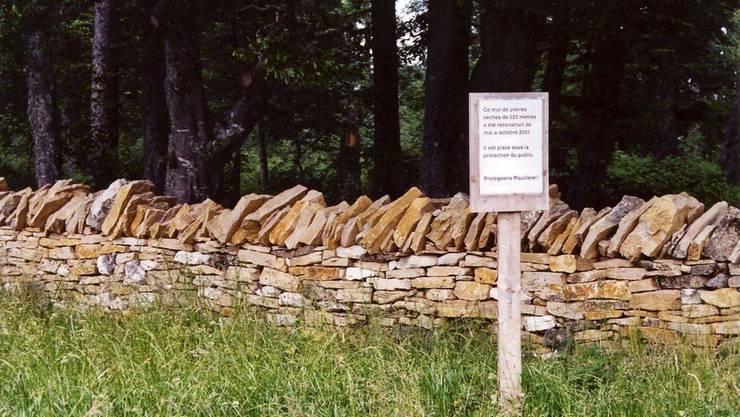 Trockenmauern bieten Lebensraum für kleine Reptilien und Insekte.