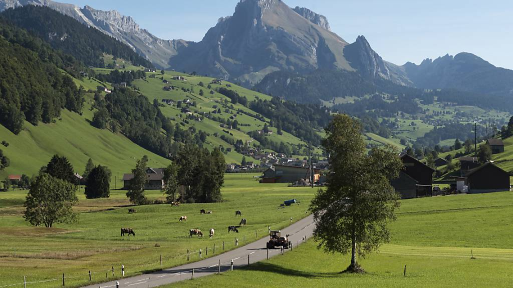 Für das Obertoggenburg wurde ein Leitfaden für Bauprojekte ausserhalb der Bauzone erarbeitet, der für den ganzen Kanton angewandt werden könnte. (Archivbild)