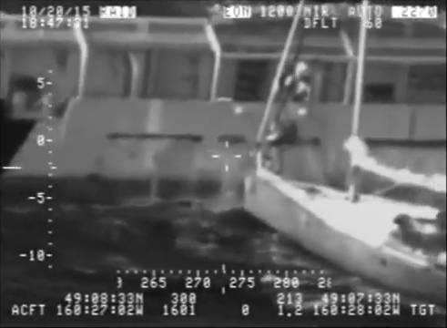 Hier rettet sich ein Mann (samt Katze!) von einem sinkenden Segelboot