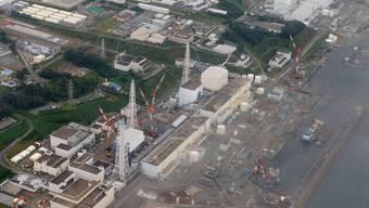Arbeiter versuchen die verseuchten Brennstäbe in Fukushima zu entfernen
