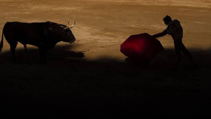 Der Stierkampf gehört zum kulturellen Erbe Spaniens - dieser Ansicht ist Spaniens Verfassungsgericht. Deshalb hat Letzteres das seit bald fünf Jahren geltende Stierkampfverbot in Katalonien wieder aufgehoben. (Archiv)
