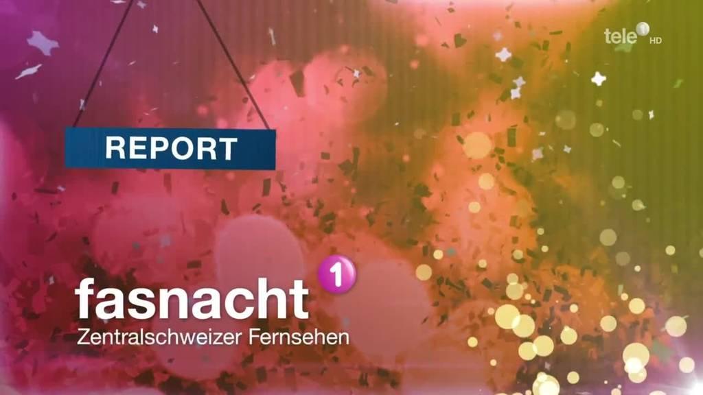 Report Schmudo 2018