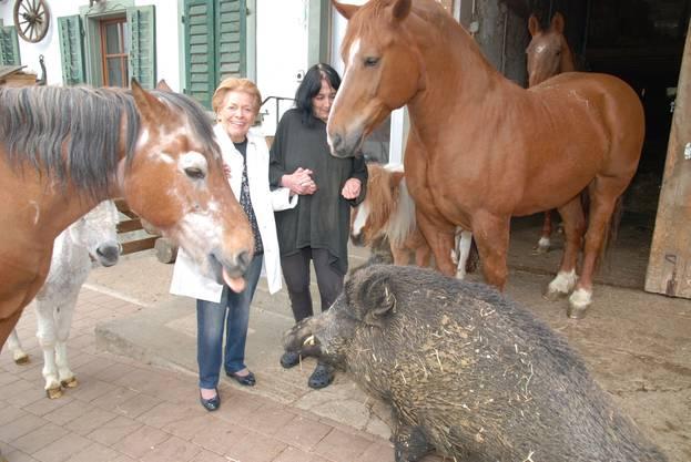 Lys Assia (links) und Monika Spörlé bei Ross, Esel und Wildsau