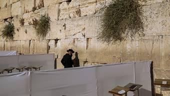 Ein Mann betet in einem abgetrennten Bereich an der Klagemauer in Jerusalem. Foto: Oded Balilty/AP/dpa