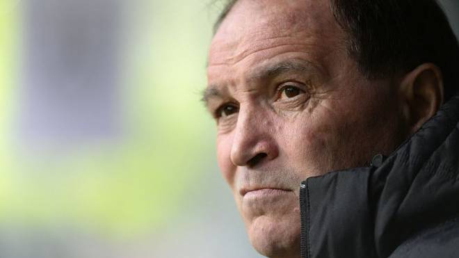 FC-Aarau-Trainer Raimondo Ponte. Foto: Keystone