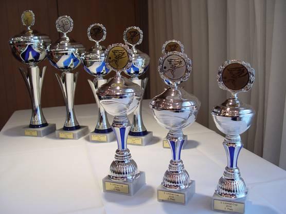 Gute Chancen auf einen Pokal. Wer in der Vorrunde ausschied, konnte noch den Limmat Cup gewinnen.