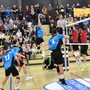 Um weiterhin NLA-Volleyball in der Rankhofhalle zu spielen, ist Traktor Basel auf finanzielle Unterstützung angewiesen.