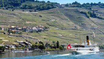 «Gönnen Sie sich doch mal ein Glas Chasselas im Lavaux», rät unser Bundeshausredaktor, ehe er sich in Richtung Westschweiz verabschiedet.Keystone