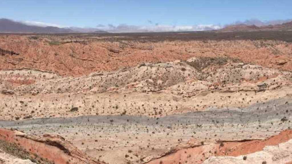 Vor 55 Millionen Jahren war die Welt dampfend heiss